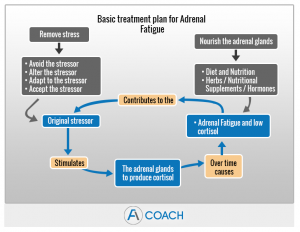 adrenal fatigue treatment plan