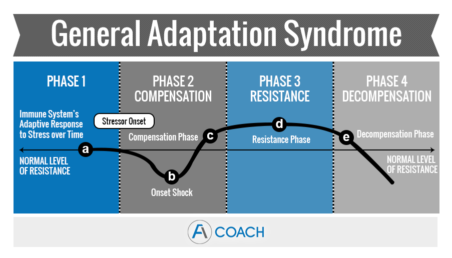 General_Adaptation_Syndrome