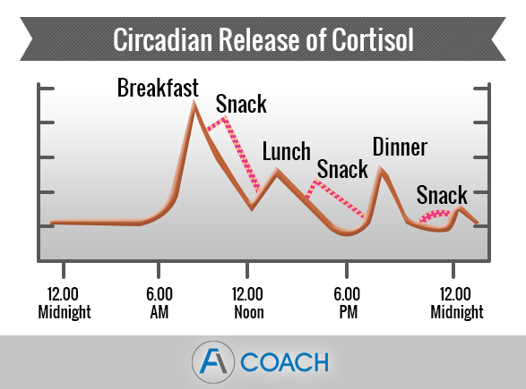 Circadian Release Cortisol