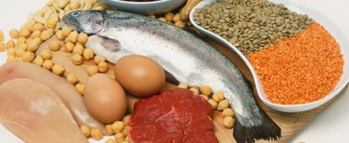 Why Protein Is Important For Adrenal Health